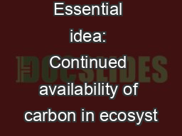 Essential idea: Continued availability of carbon in ecosyst