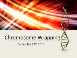 Chromosome Wrapping