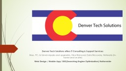 Denver Tech Solutions offers IT Consulting & Support Se