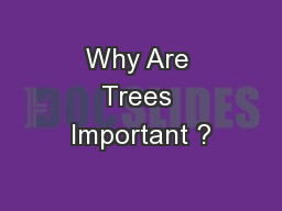 Why Are Trees Important ? PowerPoint PPT Presentation