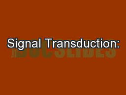 Signal Transduction: PowerPoint PPT Presentation