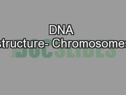 DNA structure- Chromosomes