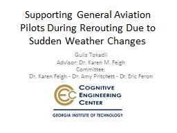 Supporting General Aviation Pilots During Rerouting Due to