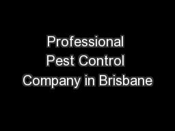 Professional Pest Control Company in Brisbane