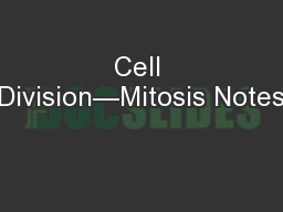 Cell Division—Mitosis Notes