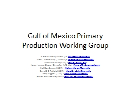 Gulf of Mexico Primary Production Working Group