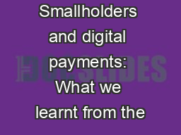 Smallholders and digital payments: What we learnt from the PowerPoint PPT Presentation