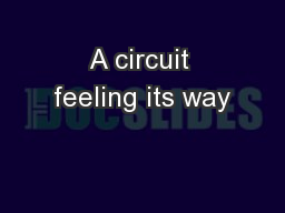 A circuit feeling its way