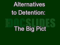 Alternatives to Detention:                     The Big Pict