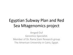 Egyptian Subway Plan and Red Sea