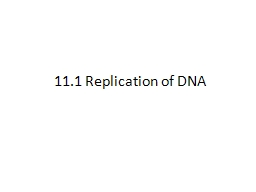 11.1 Replication of DNA