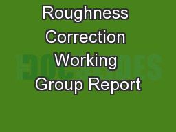 Roughness Correction Working Group Report
