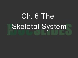 Ch. 6 The Skeletal System
