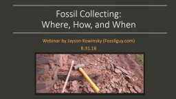 Fossil Collecting:
