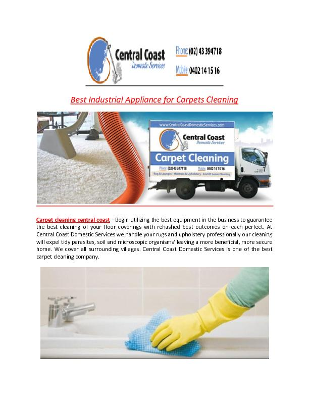 Best Industrial Appliance for Carpets Cleaning