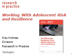 Working With Adolescent Risk and Resilience