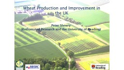 Wheat Production and Improvement in the UK