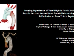 Imaging Experience of Type II Hybrid Aortic Arch Repair: Le