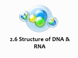 2.6 Structure of DNA & RNA PowerPoint PPT Presentation