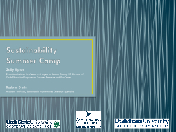 Sustainability Summer Camp
