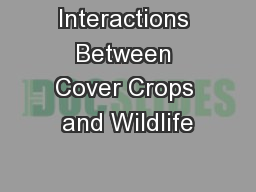 Interactions Between Cover Crops and Wildlife PowerPoint PPT Presentation