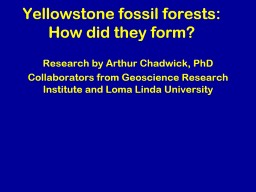 Yellowstone fossil forests: