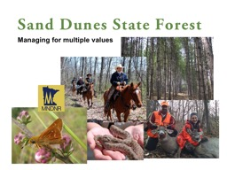 Sand Dunes State Forest PowerPoint PPT Presentation