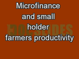 Microfinance and small holder farmers productivity