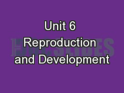 unit 6 software design and development Unit 6 - software design  development maintenance costs when choosing a language the programmer must also take into account the costs of which to keep the program.