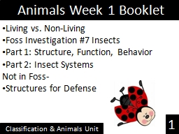 Animals Week 1 PowerPoint PPT Presentation
