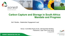 SANEDI�s Activities to a Low-Carbon Future
