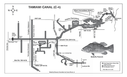 F I S H  SOUTHEAST FLORIDA CANALS ANGLERS GUIDE TO TAMIAMI CANAL C MIAMIDADE COUNTY NonNative Fish Laboratory  NW  th Street Boca Raton Florida  DESCRIPTION Tamiami Canal C is lo cated in MiamiDade Co