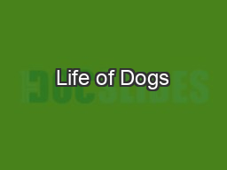 Life of Dogs