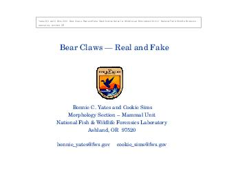 Bear Claws  Real and Fake Bonnie C PowerPoint PPT Presentation