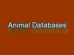 Animal Databases