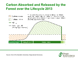 Carbon Absorbed and Released by the Forest over the Lifecyc