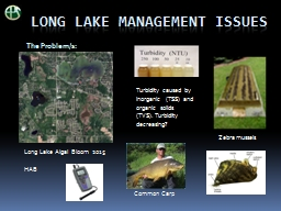 Long Lake management issues