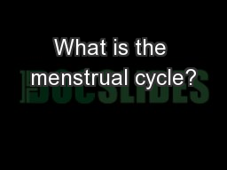 What is the menstrual cycle? PowerPoint PPT Presentation