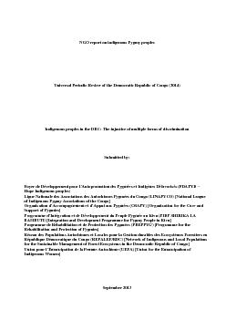 NGO report on indigenous Pygmy peoples