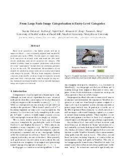 From Large Scale Image Categorization to EntryLevel Categories Vicente Ordonez  Jia Deng  Yejin Choi  Alexander C