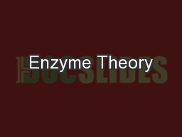 Enzyme Theory