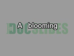 A   blooming PowerPoint Presentation, PPT - DocSlides