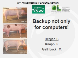 Backup not only for computers!