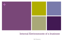 Internal Environments of a business
