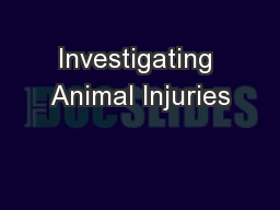 Investigating Animal Injuries PowerPoint PPT Presentation