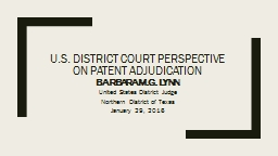 U.S. District Court Perspective on