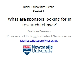 What are sponsors looking for in research fellows?