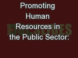 Promoting Human Resources in the Public Sector:
