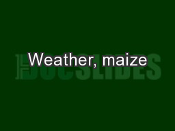 Weather, maize