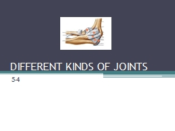 DIFFERENT KINDS OF JOINTS